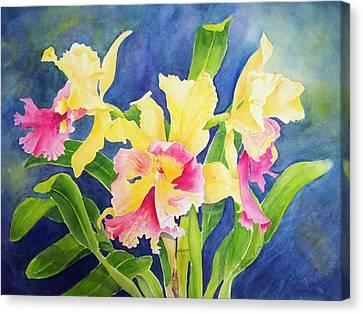 Three Cattleya's Canvas Print by Kathleen Rutten