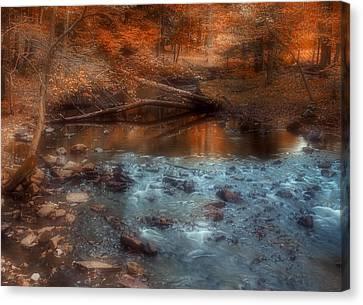 Through The Woods Canvas Print by Joann Vitali