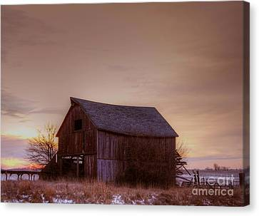 Timeless Canvas Print by Thomas Danilovich