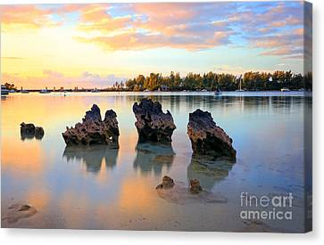 Tranquil Beach Canvas Print by Charline Xia