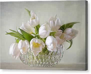 Tulips Canvas Print by Steffen Gierok