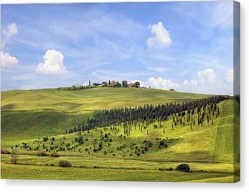 Brunello Canvas Print - Tuscany - Montalcino by Joana Kruse