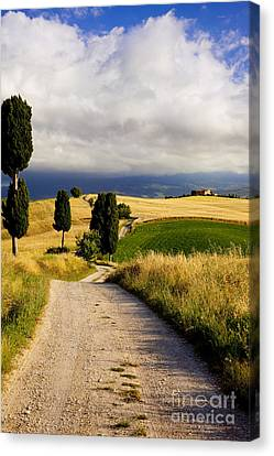 Tuscany Canvas Print by Brian Jannsen