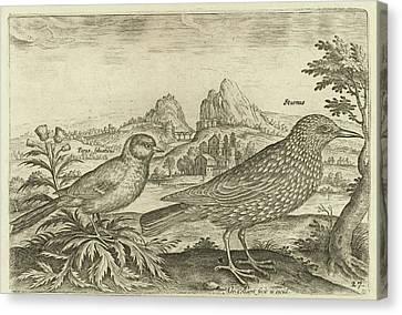 Two Birds In A Landscape, Adriaen Collaert Canvas Print by Adriaen Collaert