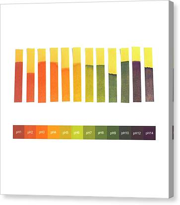 Universal Indicator Paper Canvas Print