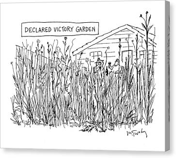 Declared Victory Garden Canvas Print by Mike Twohy
