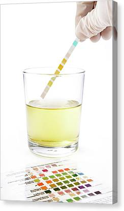 Urine Home Test Kit Canvas Print by Cordelia Molloy