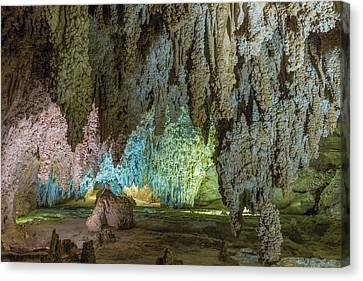 Usa, New Mexico, Carlsbad Caverns Canvas Print by Jaynes Gallery