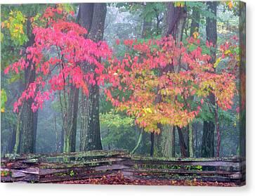 Usa, Pennsylvania, Valley Forge Canvas Print