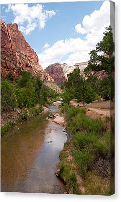 Zion National Park Canvas Print - Usa Utah, Zion National Park by Lee Foster