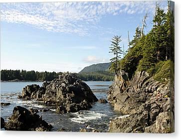 Vancouver Island, Clayoquot Sound Canvas Print by Matt Freedman