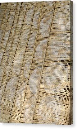 Vietnam, Cu Chi, Lang Banh Trang Canvas Print by Cindy Miller Hopkins