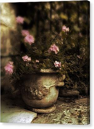 Vintage Planter Canvas Print by Jessica Jenney