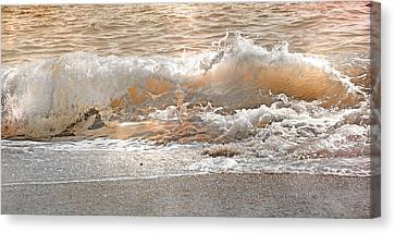 Wave Canvas Print by Betsy Knapp