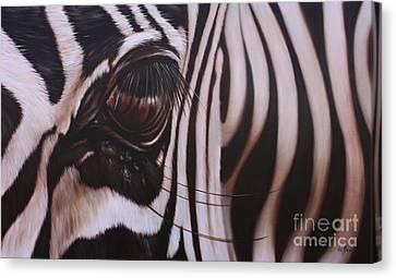 Canvas Print - Zebra by Ilse Kleyn
