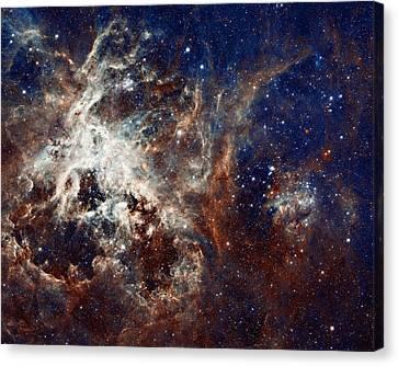 Nebular Canvas Print - 30 Doradus by Ricky Barnard