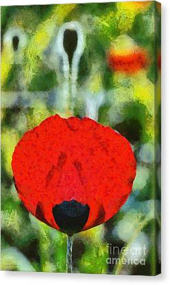 Poppy Flower Canvas Print by George Atsametakis