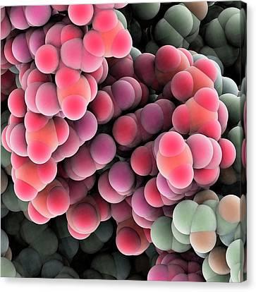 Protein Molecules Canvas Print