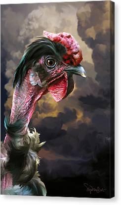 34. Turken Canvas Print