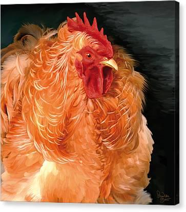 36. Frizzled Buff Cochin  Canvas Print
