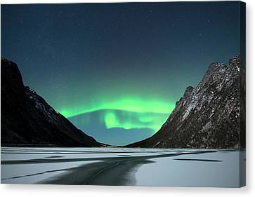 Snowy Night Canvas Print - Aurora Borealis by Tommy Eliassen