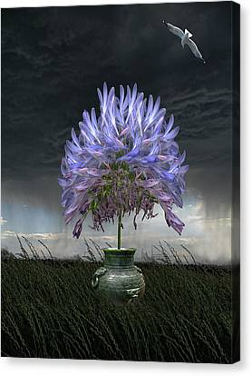 3727 Canvas Print by Peter Holme III
