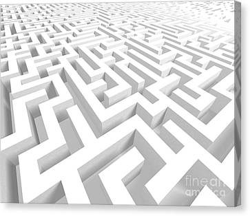 3d Maze - Version 2 Canvas Print by Shazam Images