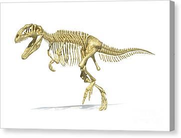 3d Rendering Of A Giganotosaurus Canvas Print