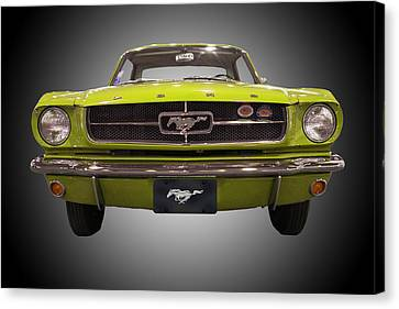 1964 Ford Mustang Canvas Print by Michael Porchik