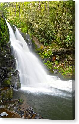 Abrams Falls Canvas Print by Frozen in Time Fine Art Photography