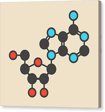 Adenosine Purine Nucleoside Molecule Canvas Print by Molekuul