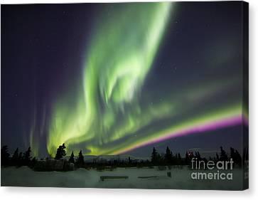 Aurora Borealis Over A Ranch Canvas Print by Joseph Bradley