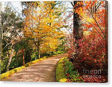 Autumn Colors Canvas Print by Gaspar Avila