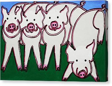 4 Beige Pigs Canvas Print by Matthew Brzostoski