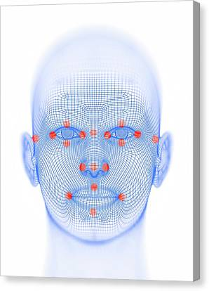 Biometric Facial Map Canvas Print by Alfred Pasieka