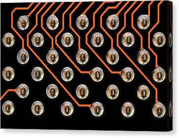 Circuit Board Tin Contacts Canvas Print by Antonio Romero