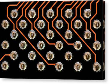 Circuit Board Tin Contacts Canvas Print by Antonio Romero