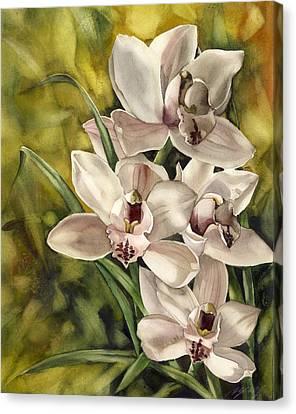 Alfred Ng Art Canvas Print - Cymbidium Orchid by Alfred Ng