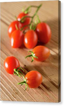 Datterino Tomatoes Canvas Print