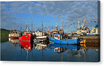 Dingle Boats Canvas Print by Barbara Walsh
