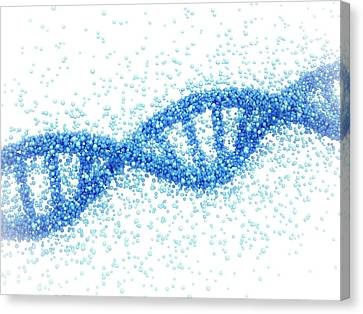 Dna Molecule Canvas Print