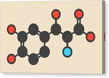 Droxidopa Hypotension Drug Molecule Canvas Print by Molekuul