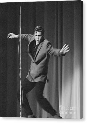 Elvis Presley 1956 Canvas Print by The Harrington Collection