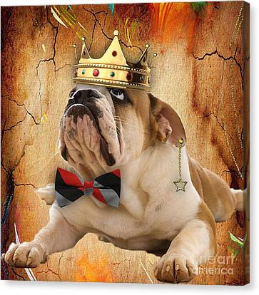 English Bulldog Bowtie Collection Canvas Print by Marvin Blaine