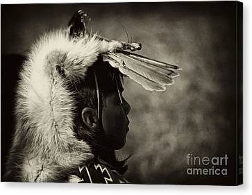 Paul Faust Canvas Print - 4 - Feathers by Paul W Faust -  Impressions of Light