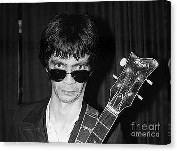 Flamin Groovies Canvas Print