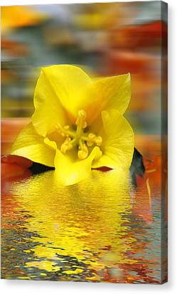 Floral Fractals And Floods Digital Art Canvas Print
