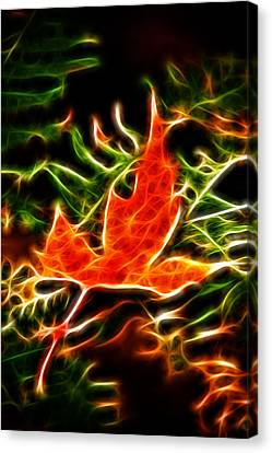 Fractal Maple Leaf Canvas Print by Andre Faubert