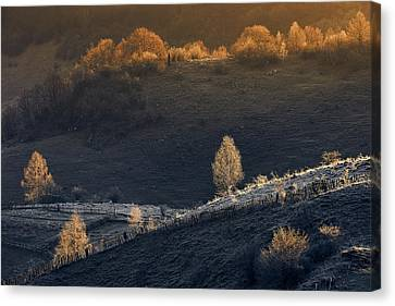 Romania Canvas Print - Fundatura Ponorului by Cristian Lee