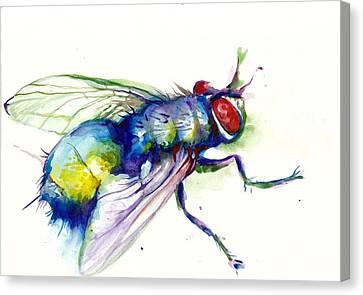 Green Fly Original Watercolor Canvas Print